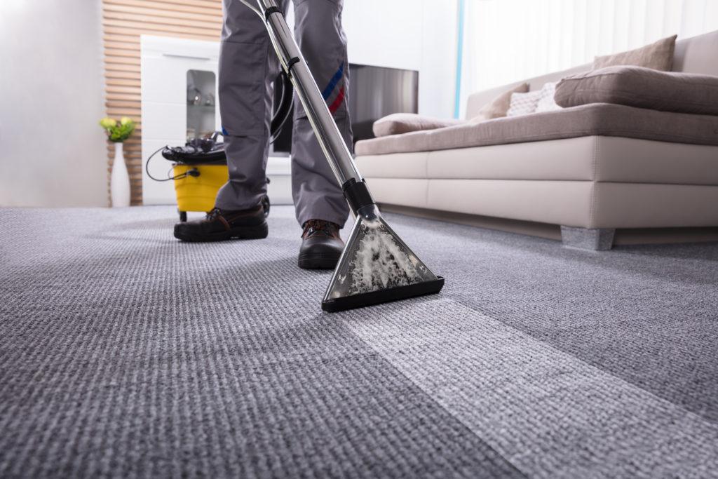 pembersihan karpet